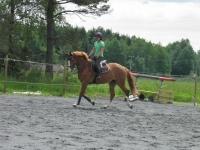 Pay & Jump hos Linda Malm Groen
